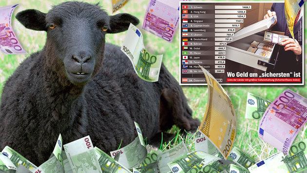 Schwere Zeiten für schwarze Schafe (Bild: thinkstockphotos.de, Krone Grafik)