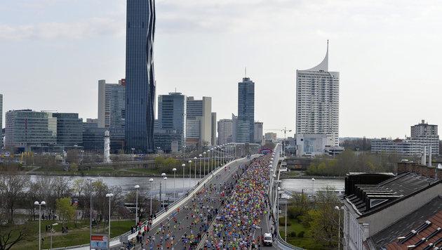 Vienna City Marathon: Kinderläufe ohne Zeitmessung (Bild: APA/HERBERT NEUBAUER)
