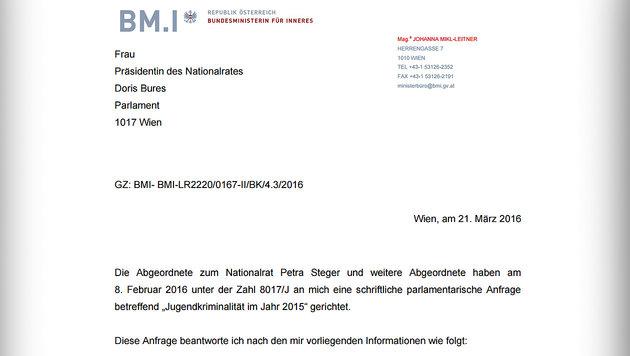2270 junge Asylwerber wurden in Wien straffällig (Bild: BMI)