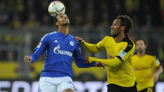 """Schalke-Coach will """"Schweinehunde"""" gegen Dortmund (Bild: GEPA)"""