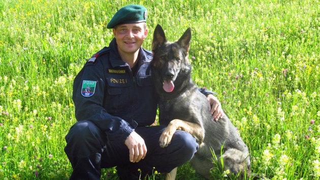"""Spürnase """"Odie"""" mit Hundeführer Christian Scherl (Bild: ZOOM-TIROL)"""