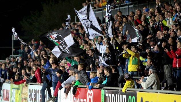 Der WAC entschuldigte sich bei der Familie bereits für das Verhalten seiner Fans. (Bild: SEPA.Media KG | Johann Schwarz | www.sepa.media)