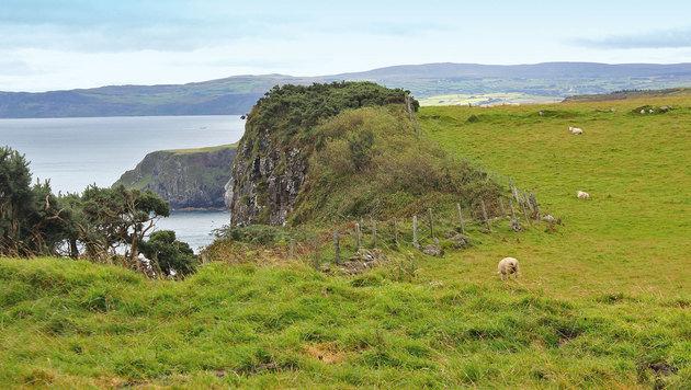 """Irland wird nicht ohne Grund die """"grüne Insel"""" genannt. (Bild: Karin Podolak)"""