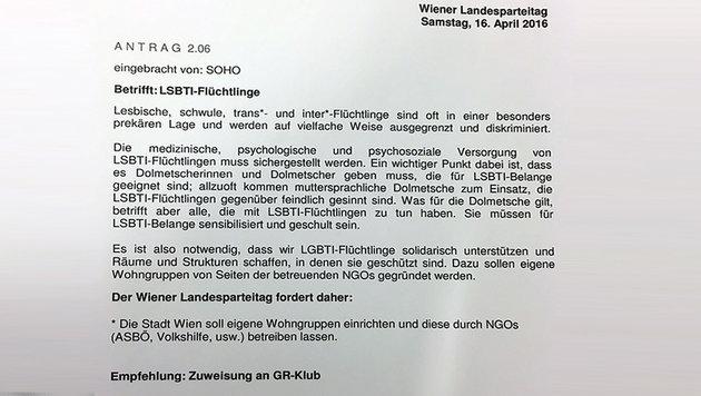 SPÖ will eigene Häuser für homosexuelle Asylwerber (Bild: Krone-Grafik)