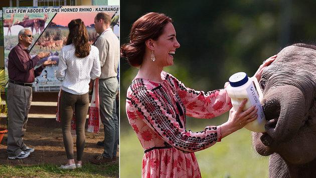 Herzogin Kate in Indien: In hautengen Jeans (l.) und mit Elefantenbaby (Bild: AFP)