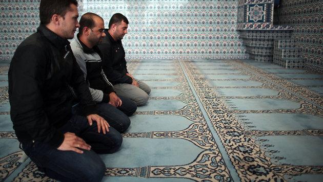 Muslime beten in einer Moschee (Bild: APA/dpa/Oliver Berg)