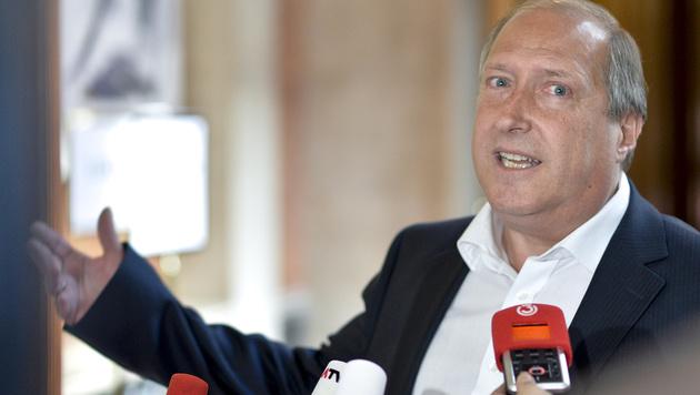 Landesrat Rolf Holub (Bild: APA/HERBERT NEUBAUER)
