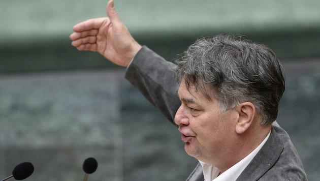 Grünen-Vize-Klubchef Werner Kogler (Bild: APA/ROBERT JAEGER)