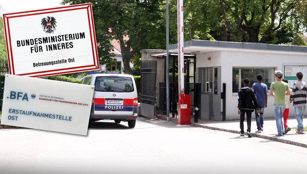 Brennpunkt Traiskirchen: Gewaltexzesse und Drogen (Bild: Andi Schiel)