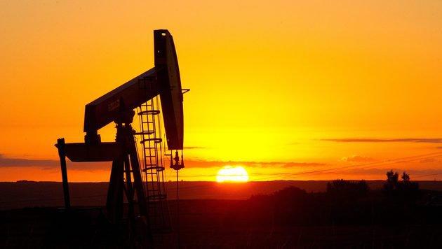 Öl-Gespräche gescheitert: Keine Förder-Obergrenzen (Bild: APA/AFP/KAREN BLEIER)