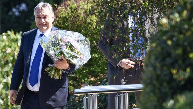 Ungarns Ministerpräsident Viktor Orban brachte einen Blumenstrauß mit. (Bild: APA/dpa/Uwe Anspach)