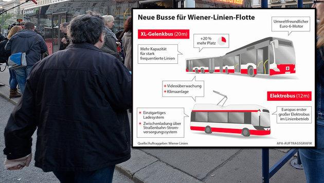 In Wien kommen jetzt die Mega-Busse (Bild: APA/HERBERT NEUBAUER, APA Auftragsgrafik)