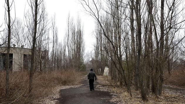 Die Geisterstadt Pripyat im Jahr 2011 (Bild: APA/HELMUT FOHRINGER)