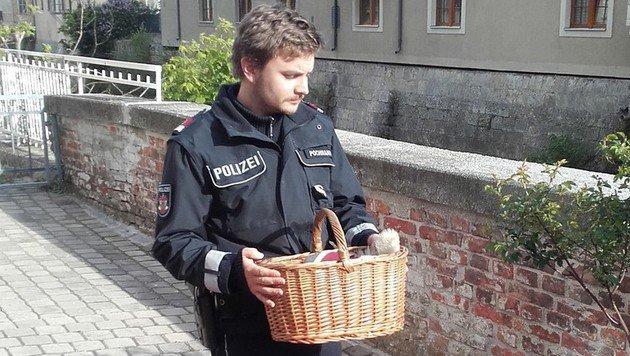 In einem Korb brachte ein Polizist die Entenfamilie in Sicherheit. (Bild: Polizei Baden)