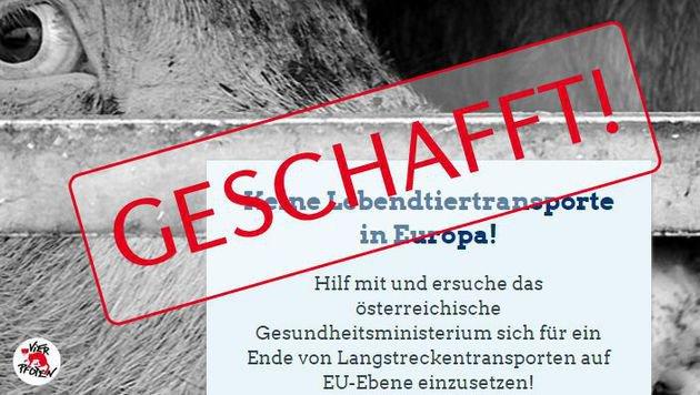Ministerium unterstützt Tiertransportkampagne (Bild: Vier Pfoten)