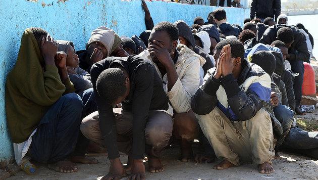 "Kern: ""USA mitschuld an Flüchtlingskrise"" (Bild: APA/AFP/MAHMUD TURKIA)"