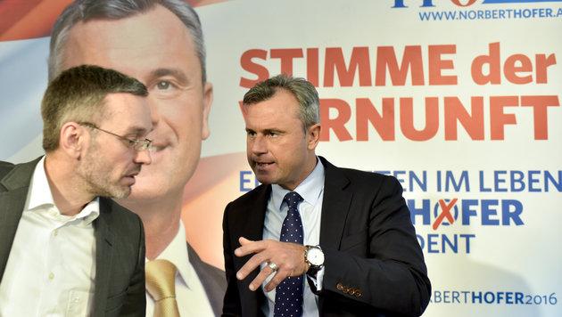 """Norbert Hofer, die """"Stimme der Vernunft""""? (Bild: APA/HERBERT NEUBAUER)"""