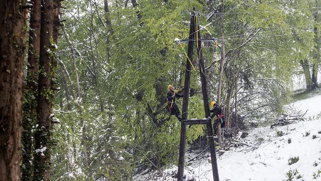 Etliche Stromleitungen mussten repariert werden. (Bild: APA/ENERGIE STEIERMARK)