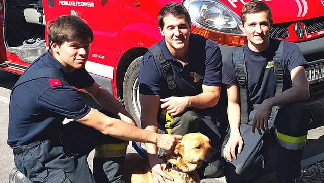 Simon, Lucas und Bernhard von der Wasserfeuerwehr Angern a.d. March brachten den Hund ins Tierheim. (Bild: Feuerwehr Angern an der March)
