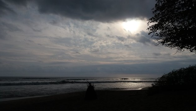 Teil 5: Pura Vida in Costa Rica (Bild: Max Rogers)