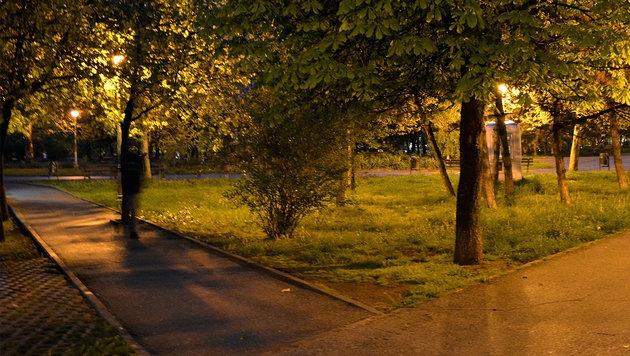 Mädchen (17) in Linzer Park vergewaltigt (Bild: thinkstockphotos.de (Symbolbild))