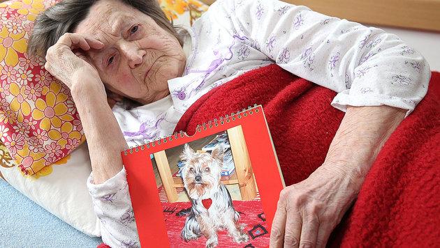 Maria B. will ihre Stella zurück. (Bild: Zwefo)