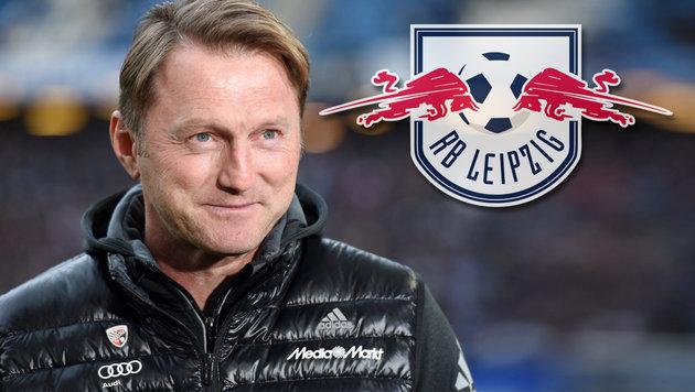 Ralph Hasenhüttl wird Trainer von RB Leipzig (Bild: GEPA)