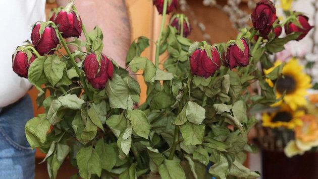 Maria F. liebte Rosen (Bild: zwefo)