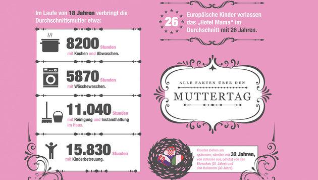 97.300 Euro für Mama als Familienmanagerin (Bild: Krone-Grafik)