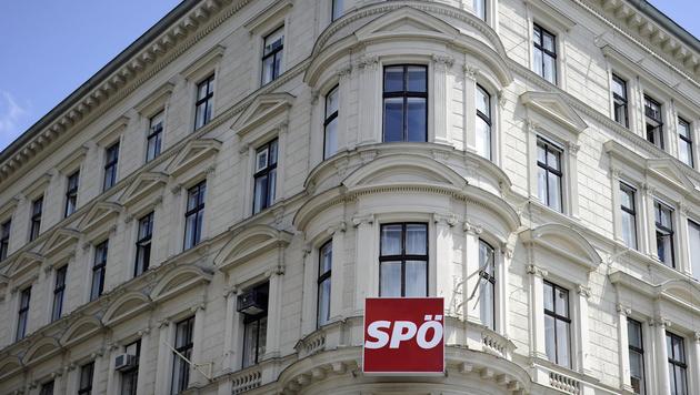 Rote Turbulenzen: Die zerrissene Sozialdemokratie (Bild: APA/Roland Schlager)
