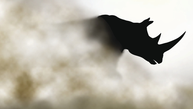Nashorn-Schutz: Mit Hightech gegen Wilderer (Bild: Data Dimension)