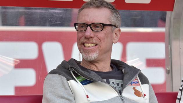 """Stöger-Ziel mit Köln: """"So gut wie letzte Saison!"""" (Bild: GEPA)"""