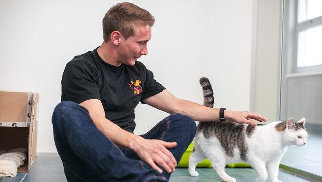 "Purina-Mitarbeiter ehrenamtlich im ""TierQuarTier"" (Bild: Purina PetCare Austria/Philipp Lipiarski Life Group OG)"