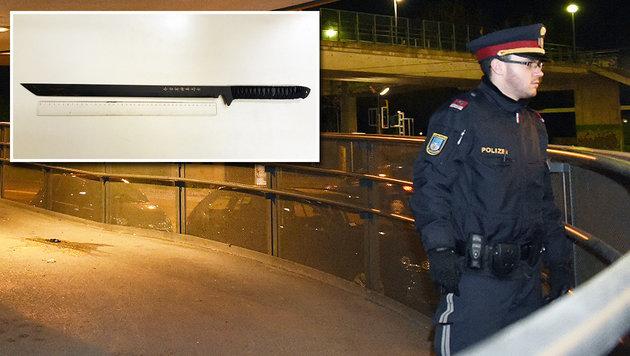 Drogenkrieg unter Asylwerbern in Wien - Festnahmen (Bild: APA/POLIZEI, APA/HERBERT P. OCZERET)
