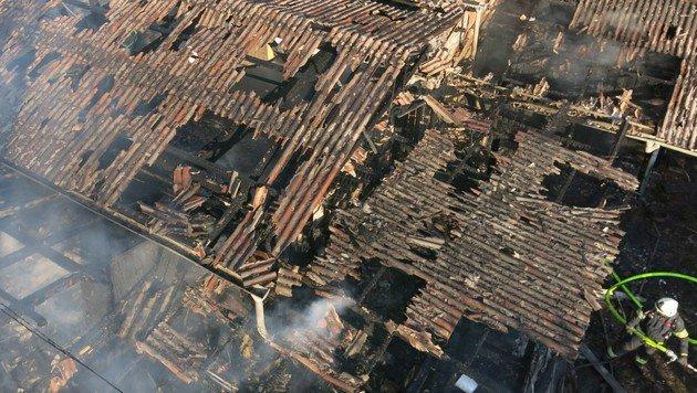 Das Gartenhaus des Pensionisten wurde ein Raub der Flammen. (Bild: Stadtfeuerwehr Oberwart)