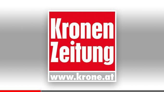 """Erfolg: """"Krone"""" auch als ePaper top! (Bild: krone.at)"""