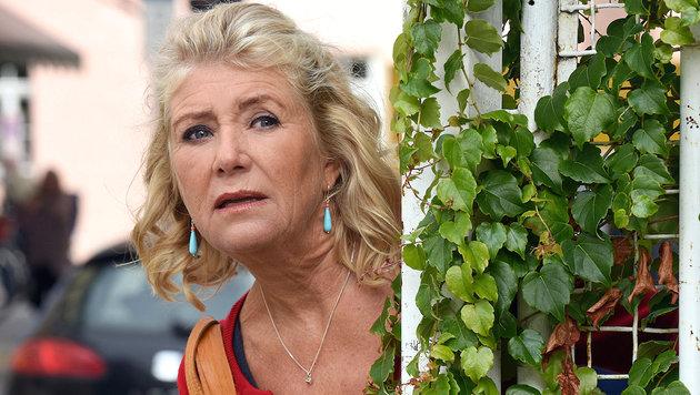Neuer Starttermin für ARD-Serie mit Jutta Speidel (Bild: ARD Degeto/Barbara Bauriedl)