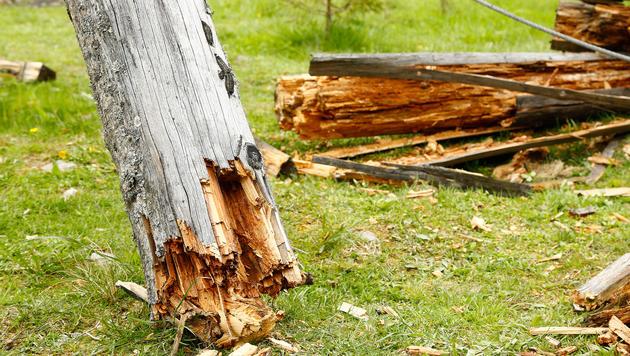 Warum das Holz der Belastung nicht standhielt, ist noch nicht geklärt. (Bild: Gerhard Schiel)