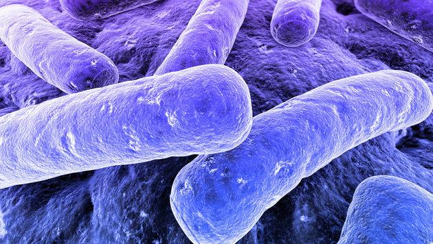 Forscher fürchten zehn Millionen Tote jährlich (Bild: thinkstockphotos.de (Symbolbild))