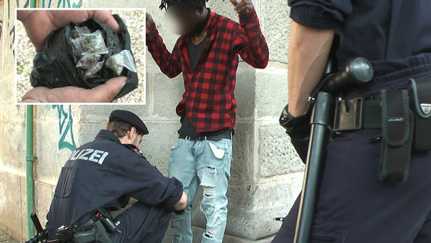 Heuer in Wien bereits 1200 Drogendealer gefasst (Bild: krone.tv)