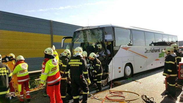 Zehn Schüler bei Busunfall auf A1 verletzt (Bild: APA/FF ST. PÖLTEN)