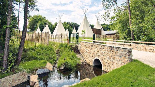 Leben wie in einem Indianerdorf: 12 Zelte mit 4-Sterne-Niveau laden die Gäste ein. (Bild: Ikuna)