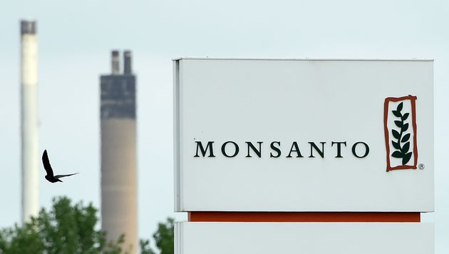 Monsanto lehnt Bayer-Übernahmeangebot ab (Bild: APA/AFP/JOHN THYS)