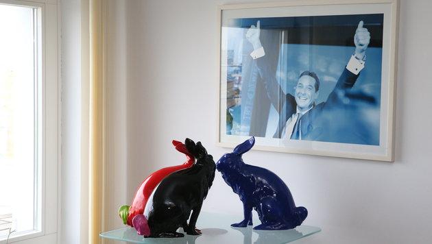 Siegerlächeln und Parteihasen im Büro des FPÖ-Chefs (Bild: Zwefo)