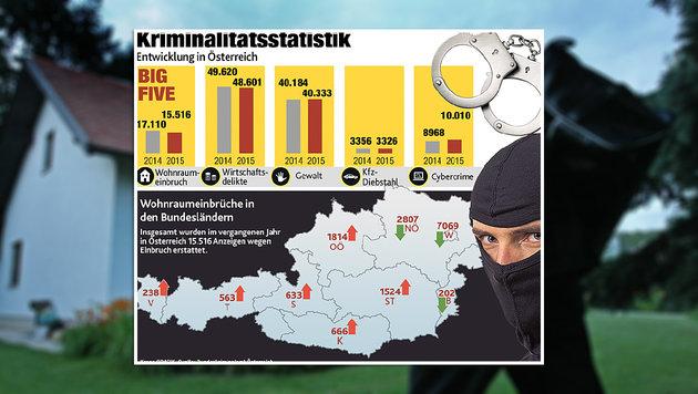 """In sechs Bundesländern stieg die Anzahl der Anzeigen im vergangenen Jahr. (Bild: Klemens Groh, """"Krone""""-Grafik)"""