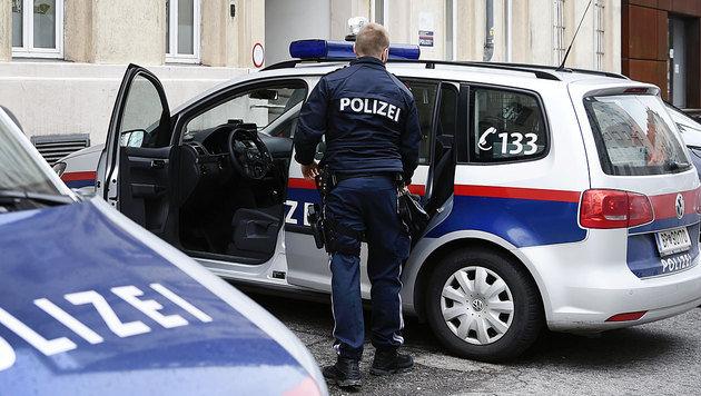Hundestreife jagte Kriminelle, Täter flüchtig! (Bild: APA/Robert Jäger (Symbolbild))