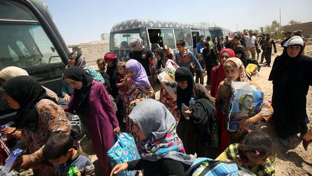 Hunderten Irakern ist die Flucht aus der belagerten Stadt Falludscha gelungen. (Bild: AFP)