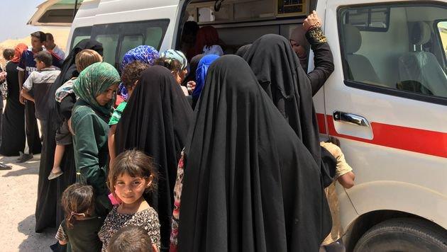 Sie haben sich rechtzeitig in Sicherheit bringen k�nnen: Fl�chtlinge aus Falludscha (Bild: APA/AFP/JEAN MARC MOJON)