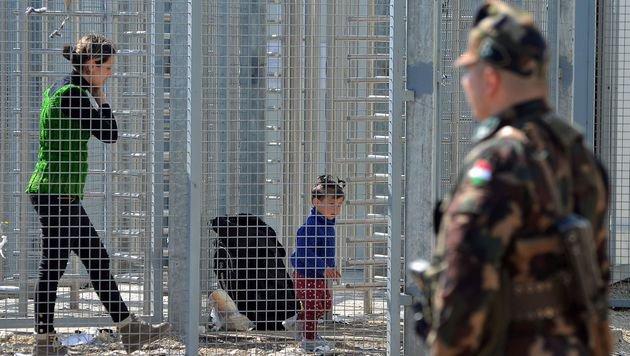 Fl�chtlinge in der serbisch-ungarischen Transitzone in R�szke (Bild: APA/AFP/CSABA SEGESVARI)