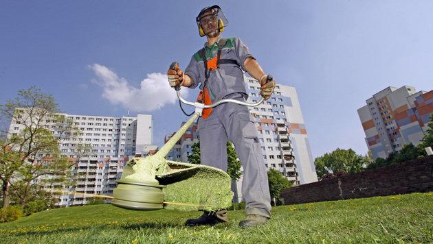 Haus- und Außenbetreuung: mehr Personal, weniger Grünflächen (Bild: REINHARD HOLL)